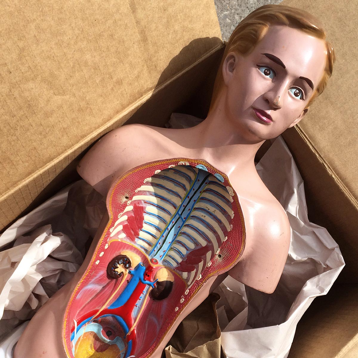 Medical props- the perfect addition to any creative shoot